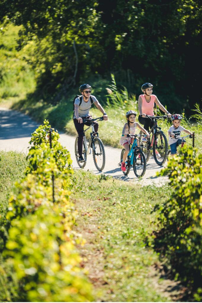 Fahrradrouten im Vaucluse