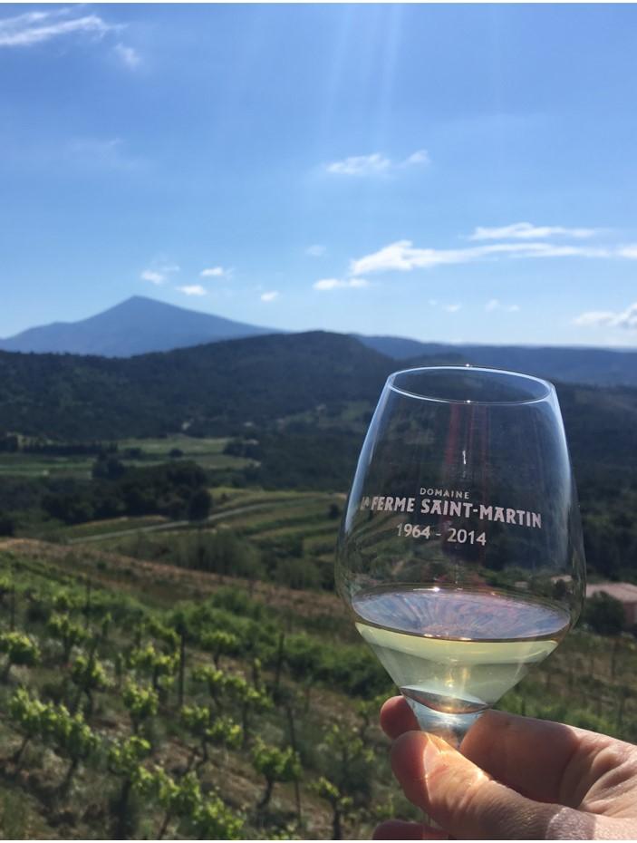 Wein - Vaucluse